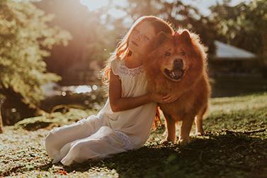 Kentucky Dog Bite Laws Blog Image